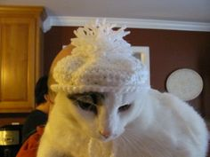 Sparkly Snowy White Winter Pet Hat for Cats Dogs with Pom Pom Handmade | DefiantCreations - Pets on ArtFire