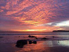 Coronado Shores Celestial, Spaces, Sunset, Outdoor, Sunsets, Outdoors, The Great Outdoors, The Sunset