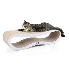 Kratzmöbel aus Wellpappe für Katzen Furniture Scratches, Cat Furniture, Canadian Cat, Cat Company, Tattoo Foto, Cat Basket, Bed Photos, Cat Scratching, Cat Art