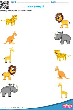 Useful for kids to identify the different kind of animals.Free animals for preschool with printable, that allow kids to Identify and circle the particular type of animals on each worksheet. Fun Worksheets For Kids, Animal Worksheets, Printable Preschool Worksheets, Science Worksheets, Kindergarten Worksheets, Free Printable, Preschool Learning Activities, Infant Activities, Colorful Pictures