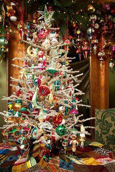 Oh Christmas Tree...