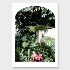 The Glass House No2 Photographic Print by Amy Wybrow See here: http://www.endemicworld.com/giclee-art-prints-nz.html?limit=all&style=botanical