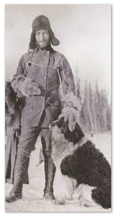 Photos of gold rush dogs. Notes from the Pack - a dog blog.