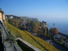Vineyards in Meersburg, Lake Constance Railroad Tracks, Stuff To Do, Vineyard, Germany, Around The Worlds, Community, Travel, Outdoor, Oktoberfest