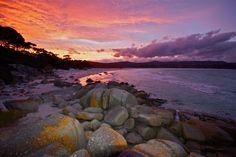 4 best places around Binalong Bay and Bay of Fires Tasmania. Insider tips from local photographer, Angela Siejka, who owns a holiday home. Cool Places To Visit, Places To Go, Travel Around The World, Around The Worlds, Tasmania Travel, Local Photographers, Rock Pools, Best Location, Beautiful Beaches