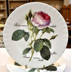 Roy Kirkham Redoute Rose new fine bone china 20cm plate. White china body decorated with a beautiful pink rose design. Made and decorated in England by Roy Kirkham of Stoke-on-Trent, Staffordshire. In pristine condition. Beautiful Pink Roses, English China, Stoke On Trent, White China, Rose Design, Bone China, Bones, England, Plates