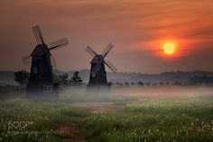 The morning... by c1113