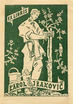 Vintage Botanical EX libris Bookplate by Martin Benka Slovakia | eBay