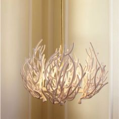 Coral chandelier for my future beach house