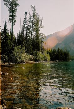 eartheld:  mostly nature