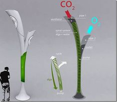 he Biolamp consists of a liquid, alga combined with water that transforms CO2 into O2­. This street lamp called Biolamp is also completed with pump for sucking in smog ~