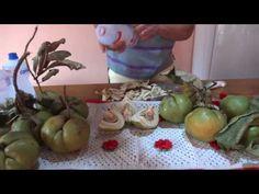 Remédio natural para dores- Fruta Saco de Adão