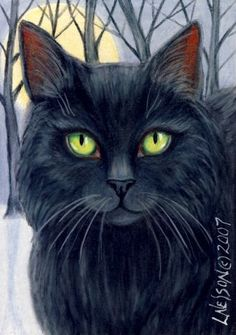 Black Forest Cat Winter ACEO Drawing