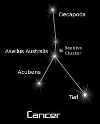 Image result for cancer constellation