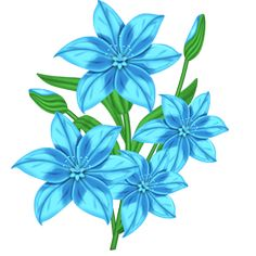 FLC_Light Blue-Lilly.png