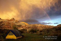 Salt Creek Canyon in Utah, Canyonlands Natl Park