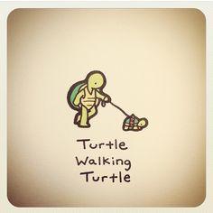 Turtle walking turtle
