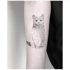 Fine line cat tattoo on the right inner forearm. Artista Tatuador: Jakub Nowicz