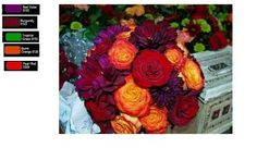September Wedding Colors   Weddings, Style and Decor, Planning   Wedding Forums   WeddingWire