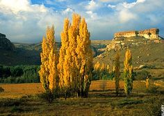 The Little Artistic town of Clarens - 3 hours drive from Johannesburg. Free State - Eastern Inland. www.goclarens.co.za