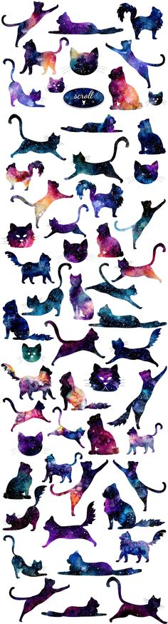 Space Cats by Salted Galaxy on @creativemarket