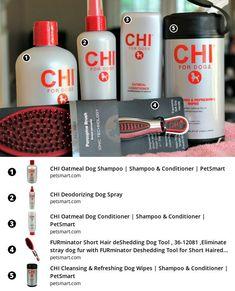 #bestdogshampoo