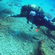 Buoyancy tips