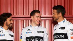 Vandoorne vaste F1-piloot bij McLaren   VTM NIEUWS