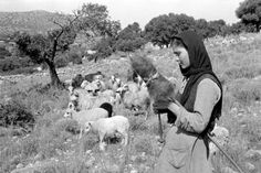 Young woman in the fields of Mallia spinning while guarding her flock of sheep. Greece Pictures, Old Pictures, Old Photos, Vintage Photos, Greece Photography, Vintage Photography, Old Greek, Crete Island, Athens Greece