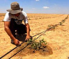 Israel, un paradise par le ciencie en un situacion excepcional