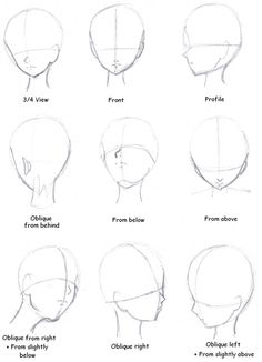 The head from different angles.