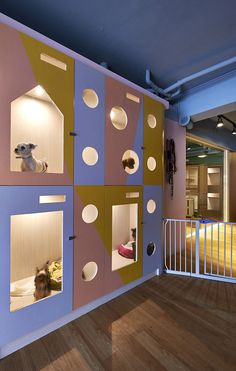 Gallery - Petaholic Hotel / sms design - 2