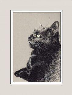 """Bella Birdwatching"" matted sample. The creative cat"