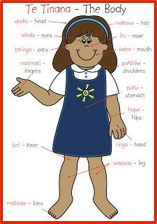 Te tinana / The body (Maori) School Resources, Teaching Resources, Teaching Ideas, Waitangi Day, Maori Words, Free Printable Clip Art, Language Immersion, Maori Art, Kiwiana