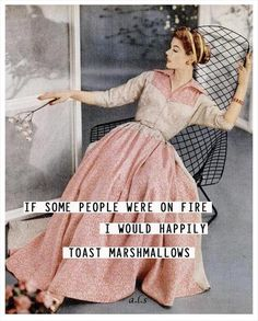 If some people were on fire, I would happily toast marshmallows - vintage retro funny quote Retro Humor, Vintage Humor, Retro Funny, Funny Vintage, Vintage Quotes, Retail Robin, Frases Humor, Ecards Humor, Toasted Marshmallow