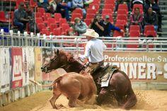 Sicherer Sieg für Italien im Durango Boots Cowhorse Nations Cup Nations Cup, Durango Boots, Sport, Bingo, Horses, Animals, Western Horse Riding, Italian Man, Pictures