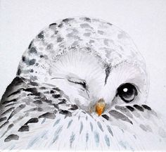 Owl paintingOriginal watercolor owlBlack and White by KURONINJIN