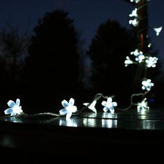 Outdoor Festive Lights Christmas outdoor solar fairy lights solar christmaslights solar 50 white outdoor led solar blossom fairy lights from festive lights workwithnaturefo