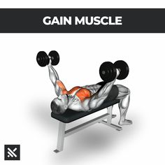 Muscle Booster: Home & gym workout planner 💪 Install & start train now for fast visible results 🏋♂ Abs And Cardio Workout, Gym Workouts For Men, Gym Workout Chart, Gym Workout Videos, Abs Workout Routines, Gym Workout For Beginners, Chest Workouts, Dumbbell Workout, Muscle Fitness
