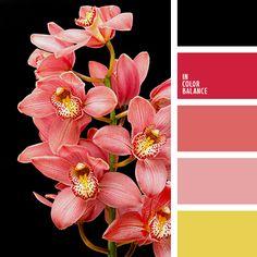 2017, amarillo y coral, amarillo y rojo, bermejo, color de las orquídeas, color rosa melocotón, color sandía y coral, coral y amarillo, coral y negro, negro y amarillo, negro y coral, negro y rojo, rojo y amarillo, rojo y negro, tonos orquídea.