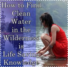 How to Find Clean Water in the Wilderness is Life Saving Knowledge Homesteading  - The Homestead Survival .Com