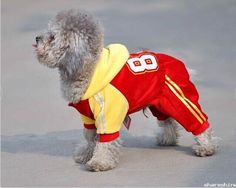 Lovely Red Dog Sport Clothes Custom Made Wholesale