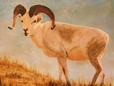 Big horn sheep. Big Horn Sheep, Finding A House, Local Artists, Horns, Moose Art, Painting, Animals, Design, Antlers