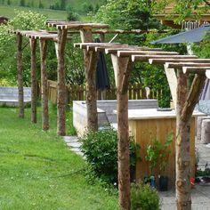 Afbeeldingsresultaat voor pergola maken voor druiven
