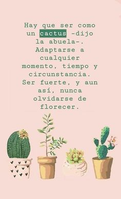 Frases /citas how to draw a rose - Drawing Tips Inspirational Phrases, Motivational Phrases, Words Quotes, Wise Words, Amor Quotes, Sayings, Cactus Quotes, Best Quotes, Love Quotes