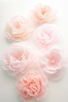 Soft and beautiful blooms.