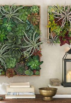 Vertical gardens help improve the region's air, reduce pollutant emissions in the atmosphere and bring thermal comfort into the environment, reducing . House Plants Decor, Plant Decor, Hanging Plants, Indoor Plants, Jardim Vertical Diy, Jardin Vertical Artificial, Plant Wall Diy, Vertical Garden Design, Vertical Gardens
