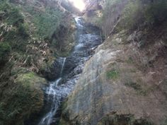 Chadwick Falls, #Shimla : You cannot miss the beautiful Chadwick Falls of Shimla in your #trip. It is a lovely waterfall, which abounds in natural grace. Every year, a vast number of tourists go to Shimla to view these falls. It falls from a height of 1586 meters making it truly unique. The falls is located in the midst of thick green woods. #travel #wanderlust #destination #tourism