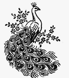Design 827 Peacocks for Pillow Cases and Hand Towels. A 1950s hand embroidery Pattern.