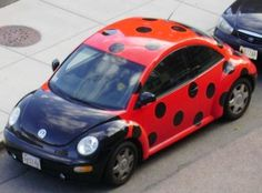 Ladybug Bug Car Google Search Pink Wheels Cute Cars Love Bugs Vw